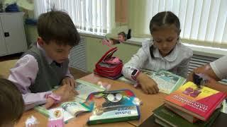 Урок Окружающего мира в 3 классе по теме: «Экология»