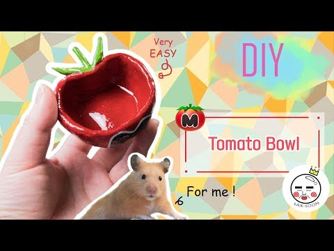 DIY | How To Make A Kirby Tomato Hamster Bowl