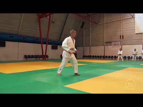 Hiroshi KATANISHI Toulouse 2017 (1/3)