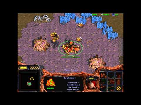 Starcraft 1 How To Cheat Correctly