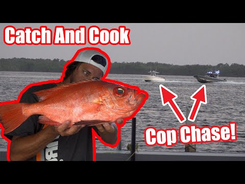 Tarpon At The Islamorada Humps! Cop Chase & World Record Fish! Catch And Cook