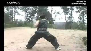 Meishan Boxing: Fierce Tiger Descends Mountain Set [梅山拳 - 猛虎下山]