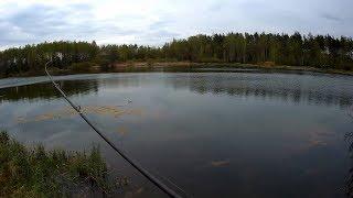 Говорю о воблерах и жду щуку Рыбалка без приукрас