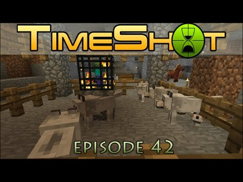 "Timeshot! Pup vs. Zombie ""Play"" Pen - Episode #42"