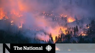 Wildfire situation stable in B.C., but bad conditions await