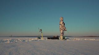Тихий день на зимней рыбалке Релакс окунь судак и загорелая морда лица в первый день весны 4k
