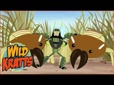 ► Wild Kratts HD - Termites Versus Tongues - Wild Kratts Full Episodes In English