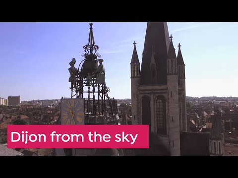 Dijon from the sky