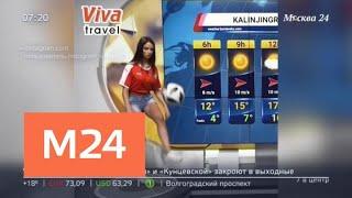 Сербская телеведущая в прямом эфире показала суперудар по мячу - Москва 24