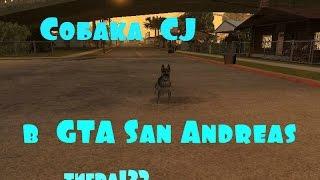 GTA San Andreas ( собака CJ )