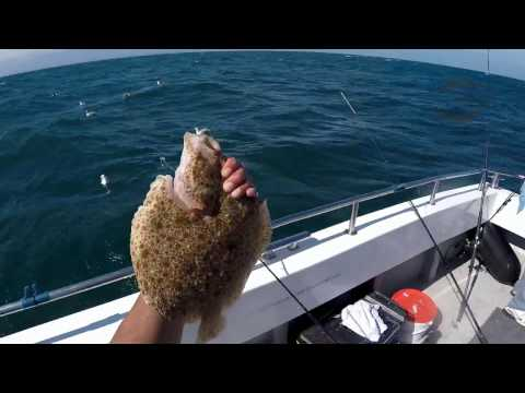 Dover Boat Fishing Aug 2016 M.J. Coker
