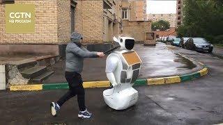 Знаменитого робота Алантима избили бейсбольной битой в Москве[Age0+]