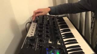 How to tune a Polivoks / Как настроить Поливокс