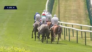 Vidéo de la course PMU PRIX DU CHAMP D'ALOUETTES
