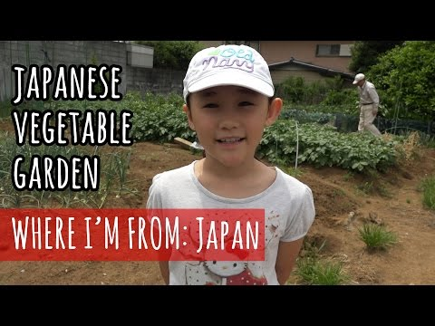 A Visit to a Japanese Vegetable Garden