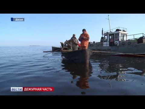 Дежурная часть. Россия 24. 28.04.2017