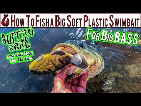 How To Fish A BIG Soft Plastic Swimbait For BIG Fall BASS From Shore! Burrito Baits Gill Is A WINNER
