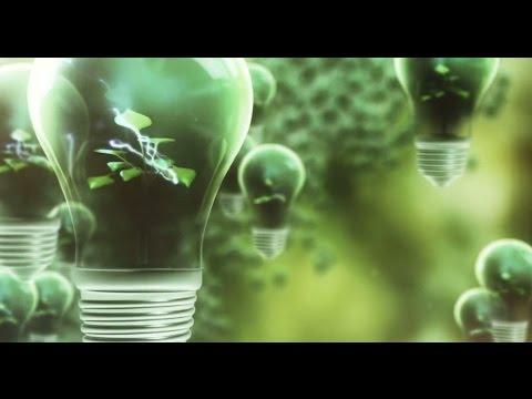 LED Light Bulbs Vs  CFL Light Bulbs: Which is Best for Me