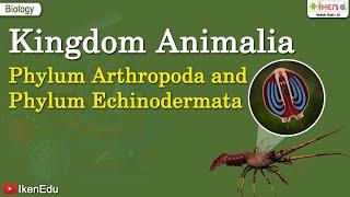 Kingdom Animalia: Phylum Arthropoda and  Phylum Echinodermata