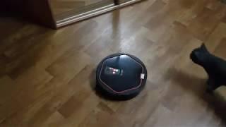 1 сезон 13 серия Говорящие робот пылесосы Машенька и Володя наводят порядок.
