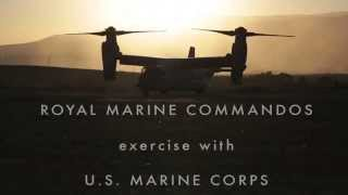 U.S. and Royal Marines - Brothers In Action