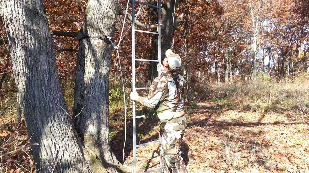 Ladder Stand Hoist 500 Lb By Bucky Mountain Products Llc