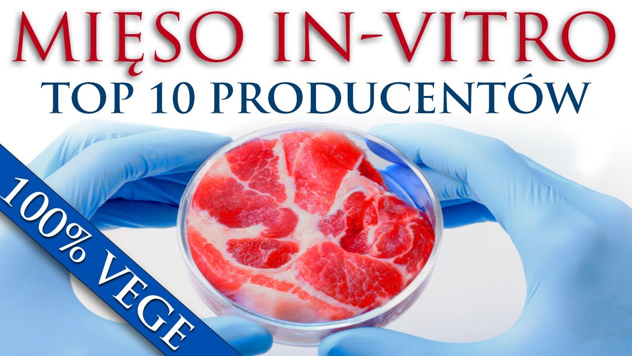 TOP 10 MANUFACTURERS OF ARTIFICIAL MEAT AND OTHER PRODUCTS OF TOMORROW
