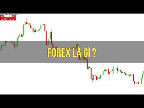 Đầu tư tài chính - Forex là gì?