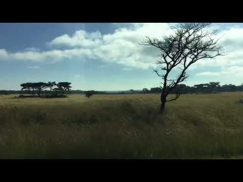 Zimbabwe, Marondera my trip April 2018
