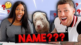 REVEALING OUR PUPPY'S NAME!!