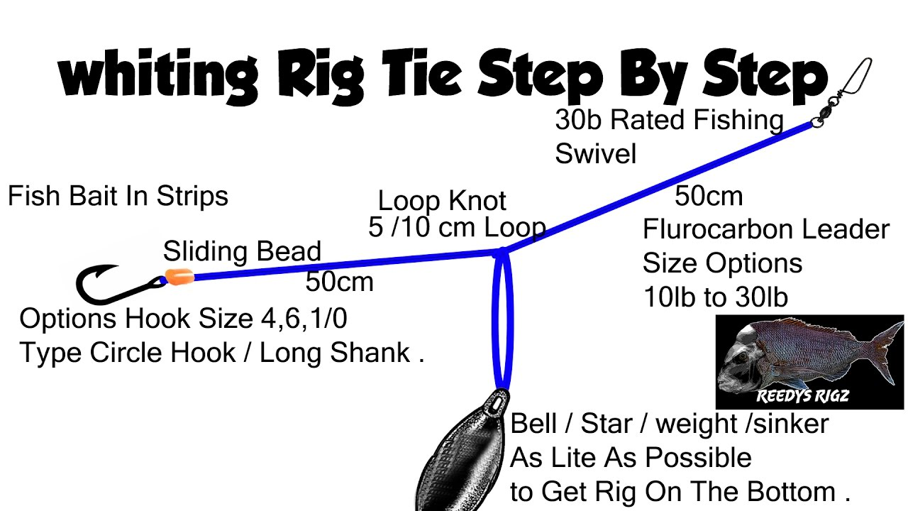 hight resolution of whiting rig tie fishing rigs make rigs tying diagram fast current