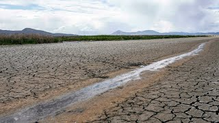 Extreme weather disasters rock planet • FRANCE 24 English