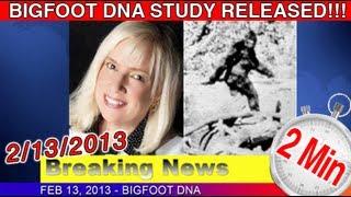 The Bigfoot Report - Bigfoot News #15 - Melba Ketchum finally releases long awaited DNA Study