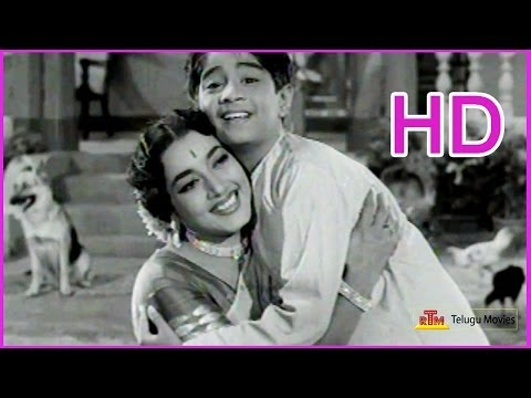 Mamidi Komma Malli Malli - Telugu Evergreen Song - Ramu - NTR,Jamuna,S Varalakshmi  (HD)