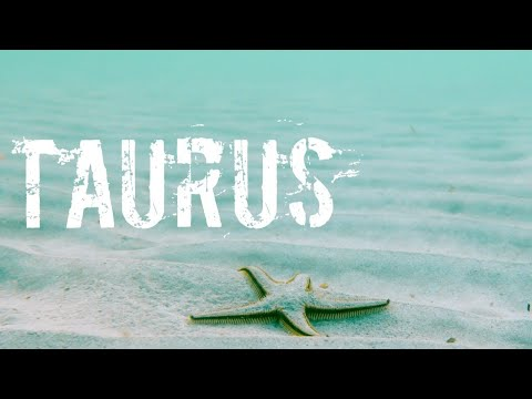 TAURUS IT'S FINALLY YOURS! - AUGUST 19 - 25