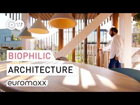 Tour Of Biophilic Apartment In Amsterdam