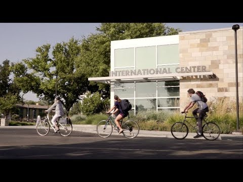 UC Davis - International Students