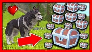 СИМУЛЯТОР ВОЛКА #37 МНОГО ЛЕГЕНДАРОК Жизни Зверей WildCraft про котят лис собак ДЕТСКИЕ ИГРЫ