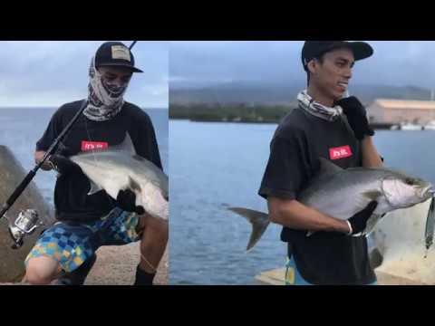 HC Lures   Ulua & Omilu    Shoreline Plugging