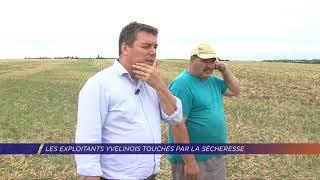 Yvelines | Les exploitants yvelinois touchés par la sécheresse