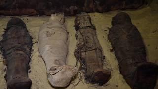 В Египте нашли 50 мумий