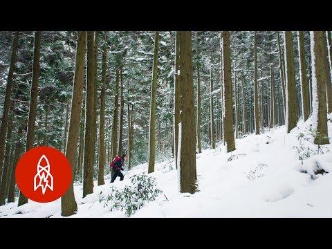 Ascending South Korea's Most Respected Mountain