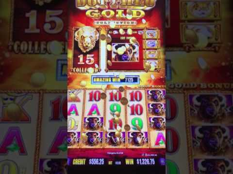 Hand Pay!!! Buffalo Gold Max Bet $6.00 L'auberge Du Lac 11-28-16.
