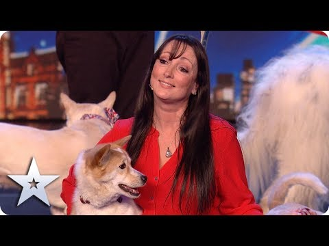 MAGICAL and MOVING dog act proves MIRACLES do happen! | BGT 2020