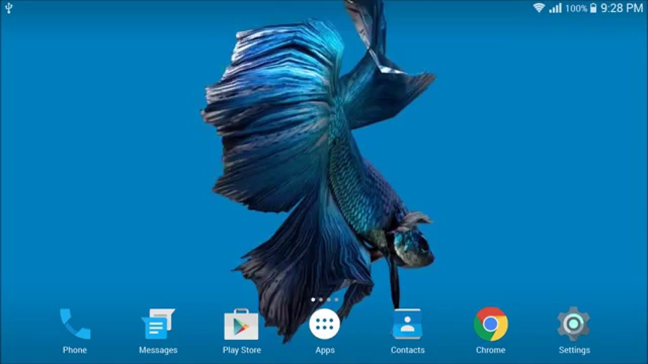 Betta Fish 3d Live Wallpaper
