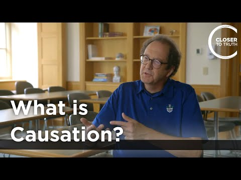 Walter Sinnott-Armstrong - What is Causation?