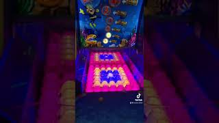 IMPOSSIBLE FISHBOWL FRENZY ARCADE GAME!