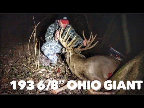 What Are Friends For!? The Hunt For Kong, A 193 6/8'' Ohio Beast! | Bowmar Bowhunting |