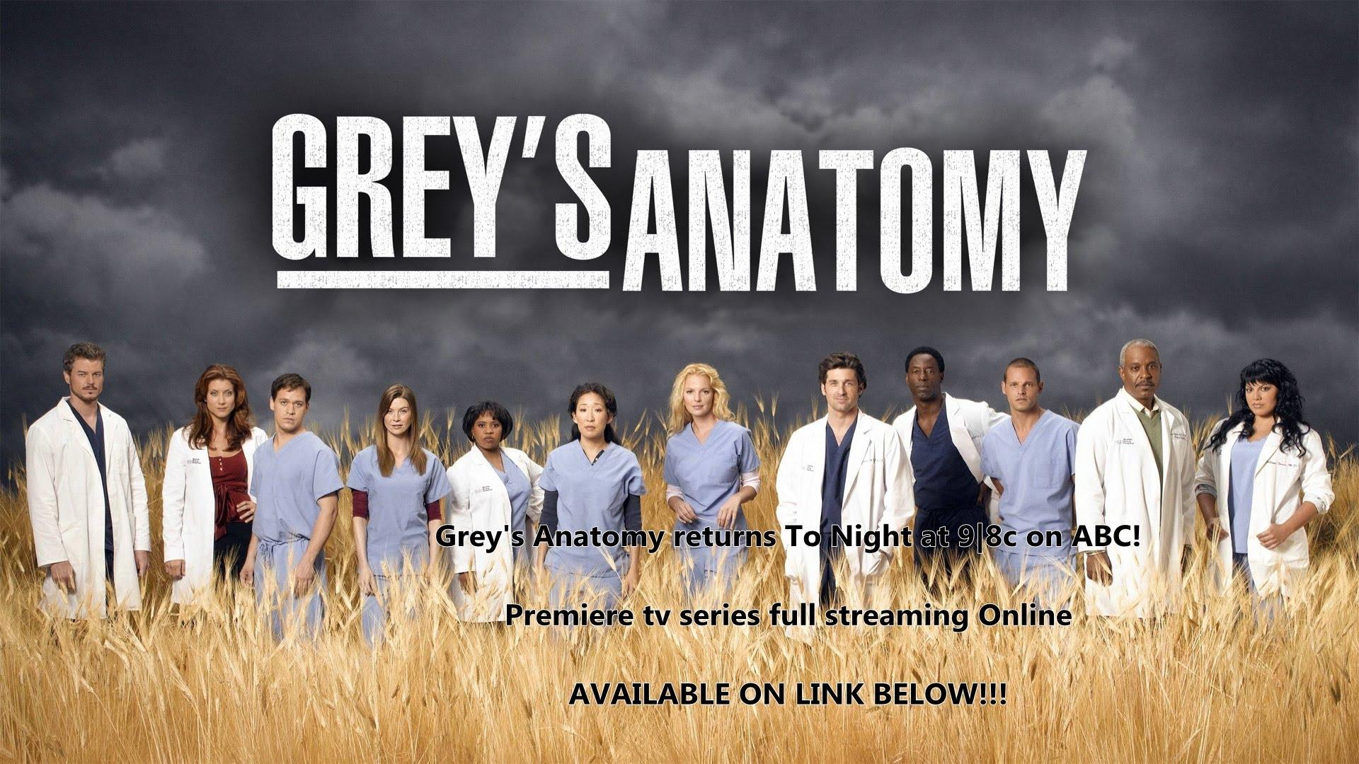 Grey\'s Anatomy \