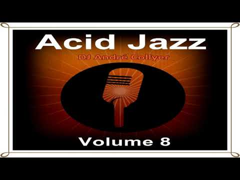 Acid Jazz, Lounge, R&B and Chillout mix by DJ André Collyer Vol 8